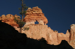 Bryce national park - Utah