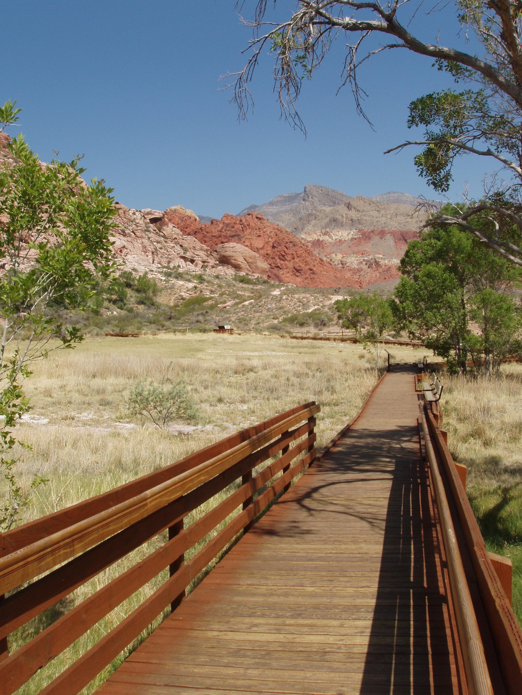 Calico Basin - Las Vegas