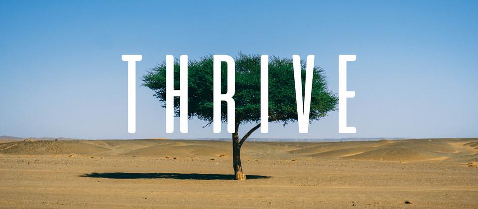 Thrive Branding.jpg