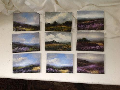Miniature Moorlands