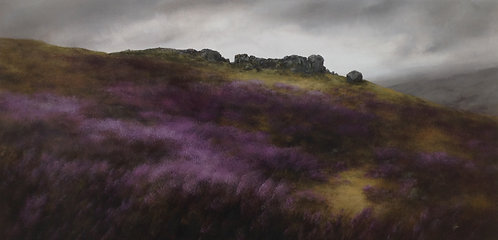 Cow and Calf Rocks, August: 24 x 48 ins