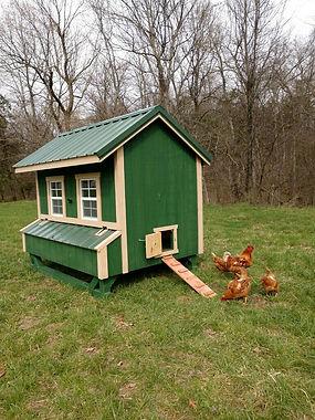 TW Chicken Coop.jpg