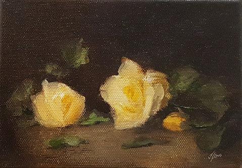 Yellow Roses ii: 5 x 7 ins