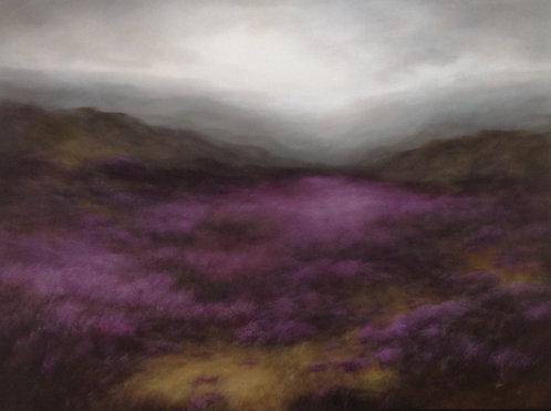 Heather, Low Cloud: 36 x 48 ins