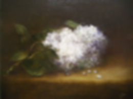 27 White Lilacs 8 x 10 ins private colle