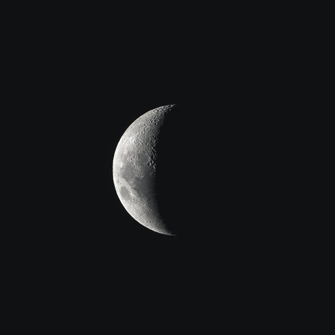 pexels-photo-5007442.jpeg