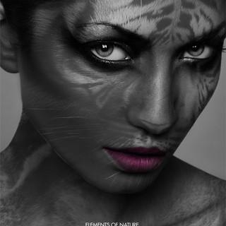 © Yaser Siksik