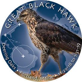 BlackHawkSticker_Crop_1208.6.jpg