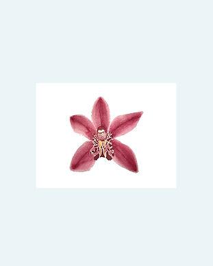 flors.jpg