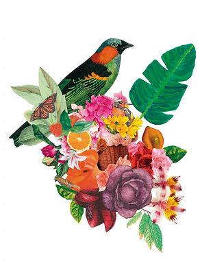 botanico_collage.jpg
