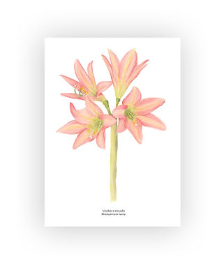 botanico#1.jpg