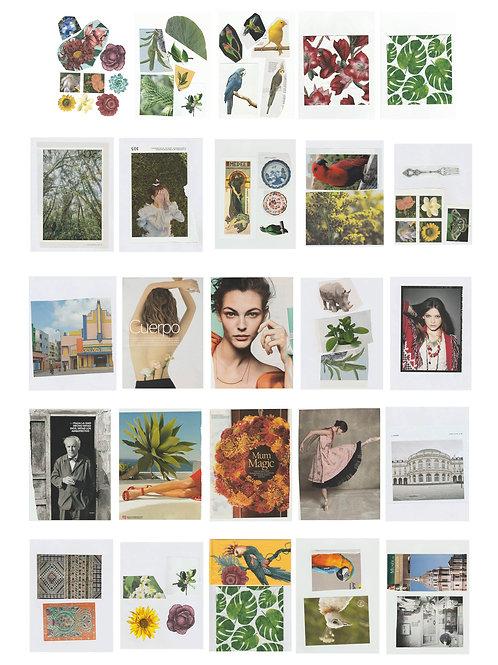 Material para collage