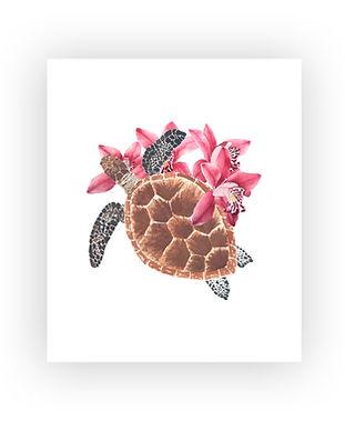 tortuga_flores#1.jpg