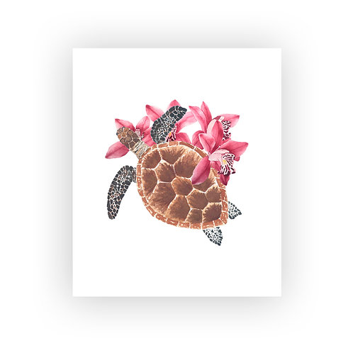 Tortuga botánica rosa