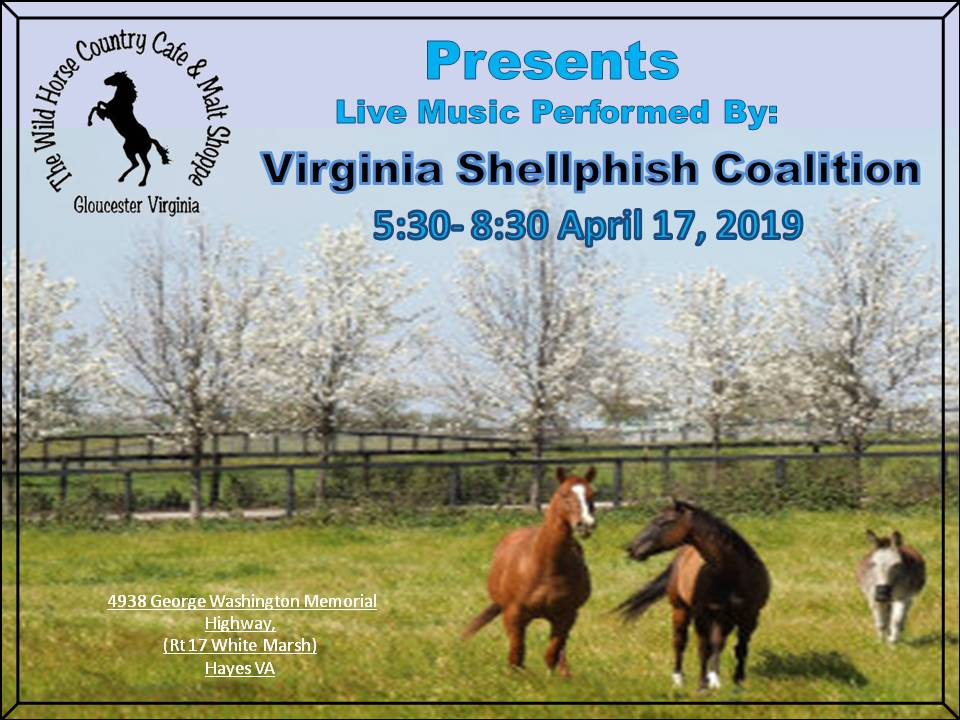 Virginia Shellphish April 17 2019