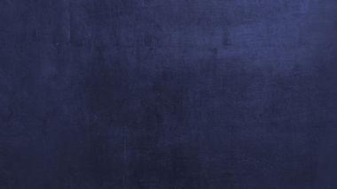 Phönix blauer Hintergrund.jpg