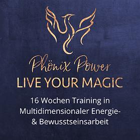 Phönix Power Live Your magic - blau.png