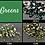 Thumbnail: Crystal Rhinestones (10 Gross)