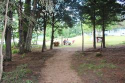 Fox Den Trail to Beach