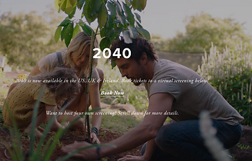 Online 2040 Screening