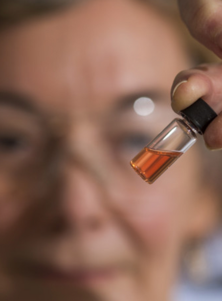 Scientists discover world's oldest colour – bright pink