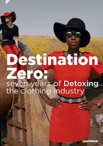 Greenpeace Detox Report