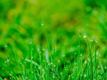Rainy Days 🌧🏡