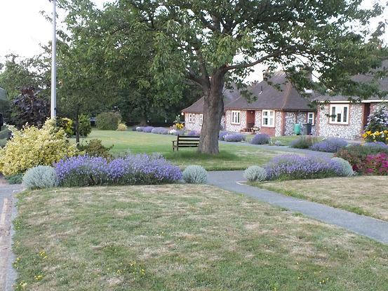 Bernhard Baron Cottage Homes
