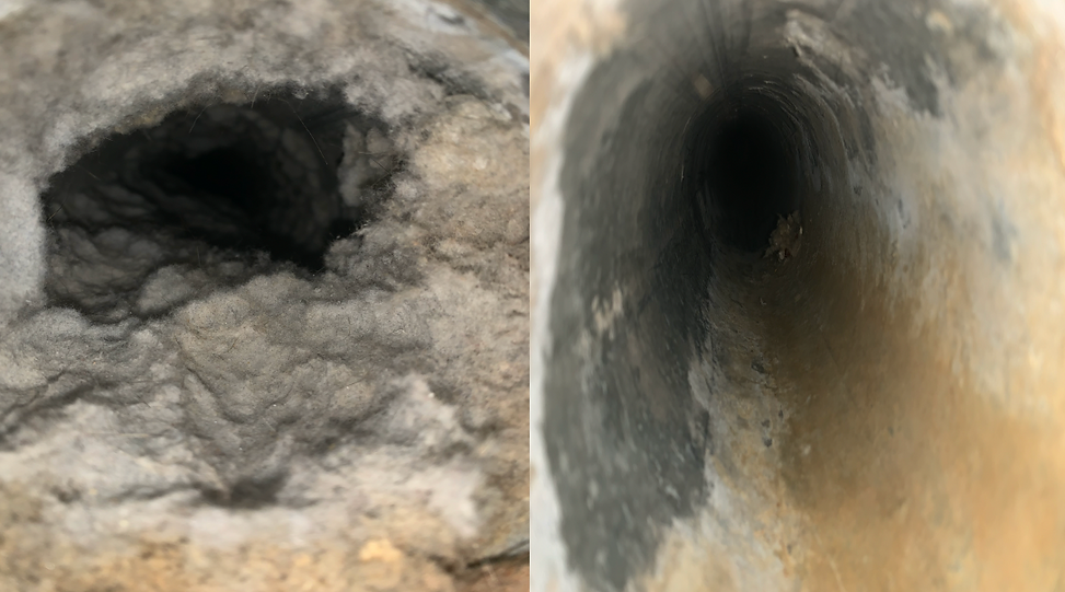 Dryer Vent Before & After.png