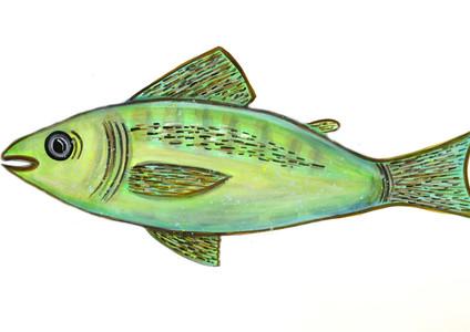 M.Kim.greenfish.jpg