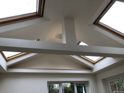 Vaulted Ceiling with Velux's