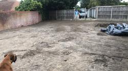 After Garden Clearance