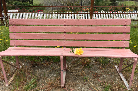 Come Take a Seat on This Bench.. Let's Talk