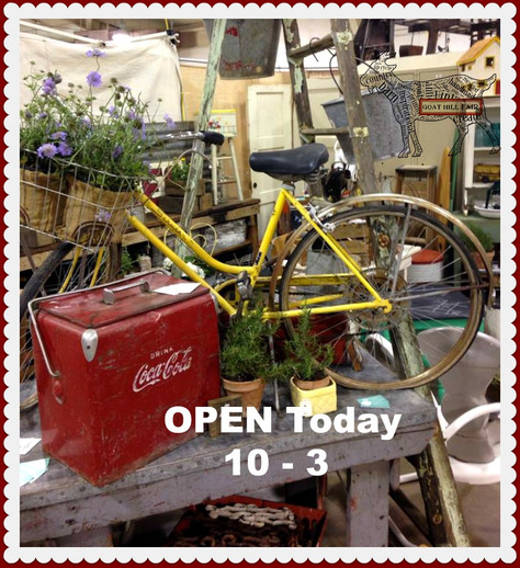 We Are Open For VINTAGE Fun