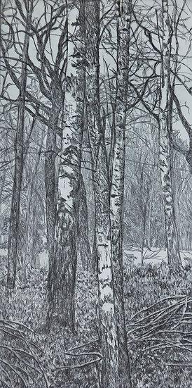 """""""Templeton Wood"""""""