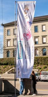 """2014 Ausstellung """"Strandgut"""" im Zoologischen Museum der Universität Zürich"""
