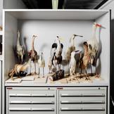 2007 Im Depot des Zoologischen Museums