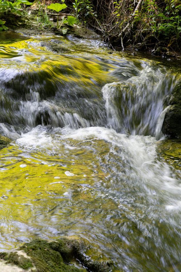 chaltbrunnental_200519-74.jpg
