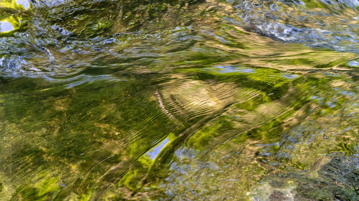 chaltbrunnental_200519-70.jpg