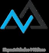 001 - Zenit Logo (1) - Copy.png