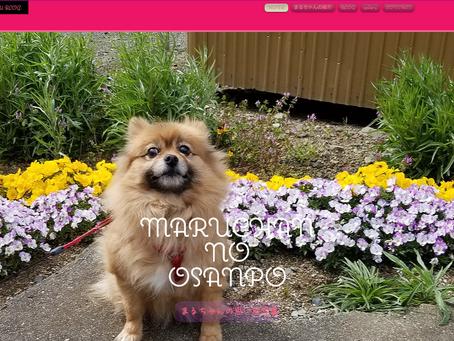 「MARUCHAN NO OSANPO」のWebサイト