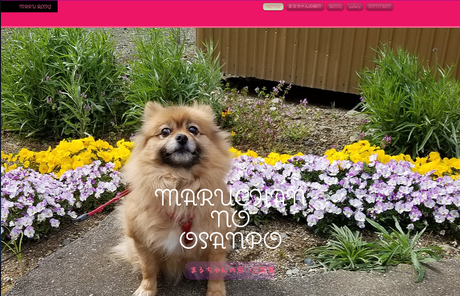MARUCHAN NO OSANPOのWebサイト画像