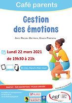 22 03 2021 Gestion des émotions.jpg