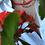 Thumbnail: Faset Kesim Doğal Mercan
