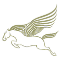 pegasus+military+fitness+logo+gr4002_edi