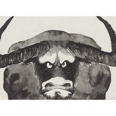 Big Bull 大牛