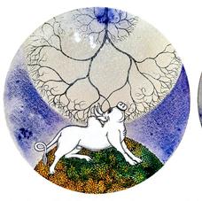 Cosmic Bull