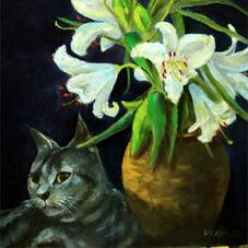 Calico Cat 花猫