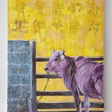 Purple Cow 紫色牛