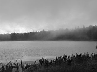 fog and lake